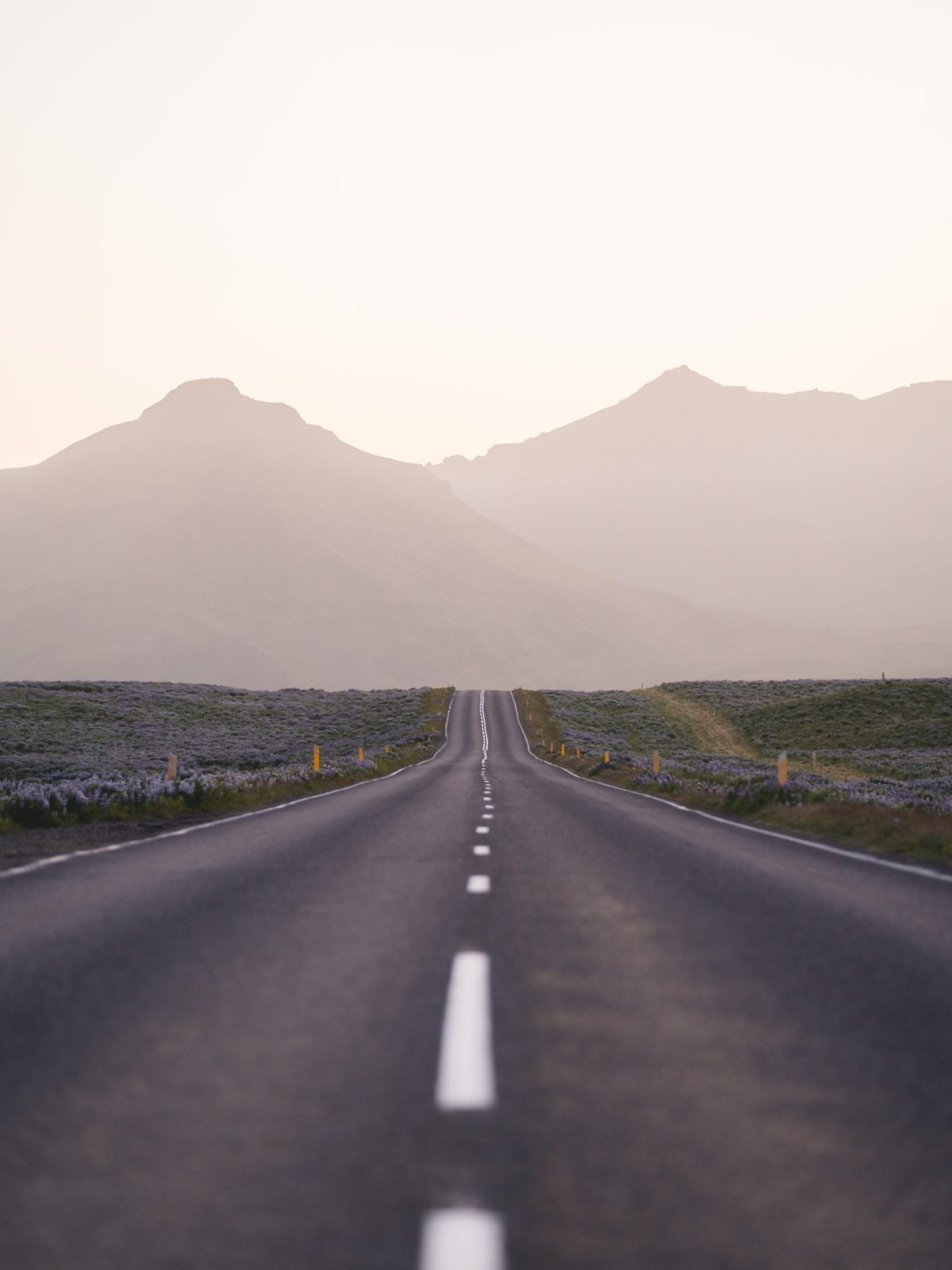 Long Road into the Distance